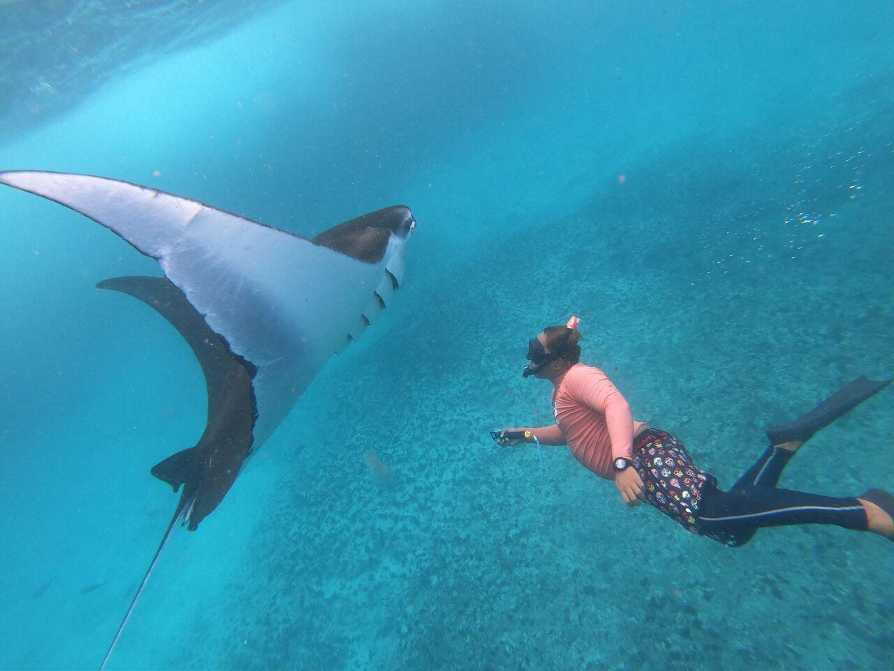 Lembongan Snorkeling day trip